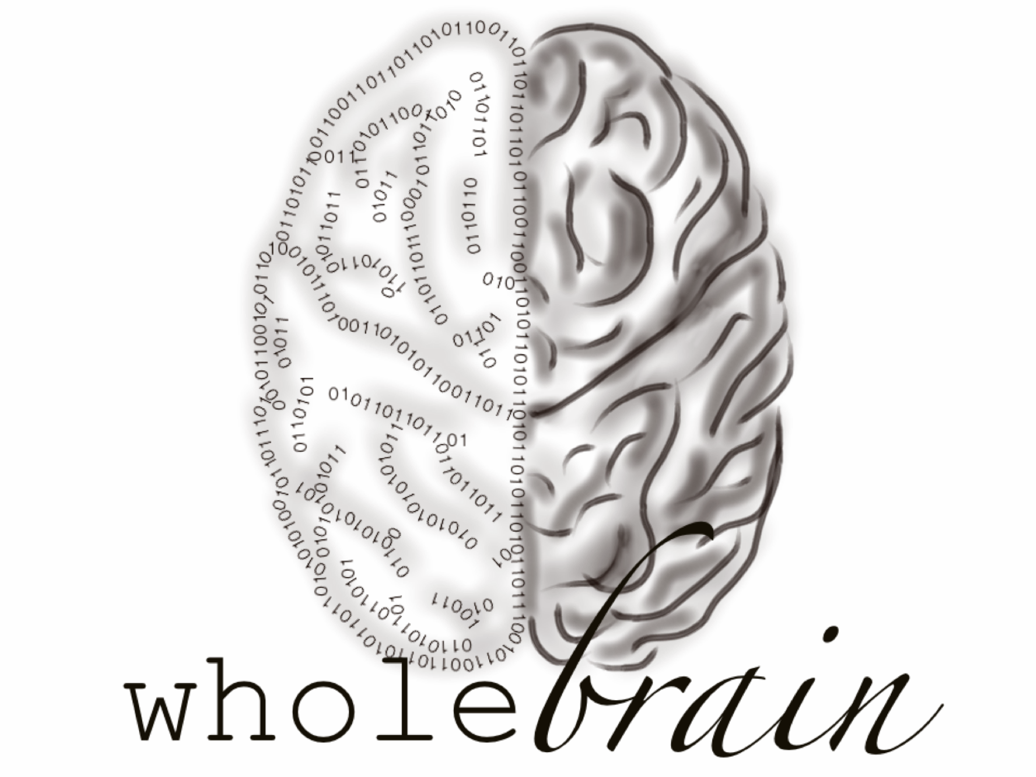 whole brain enterprises inc.